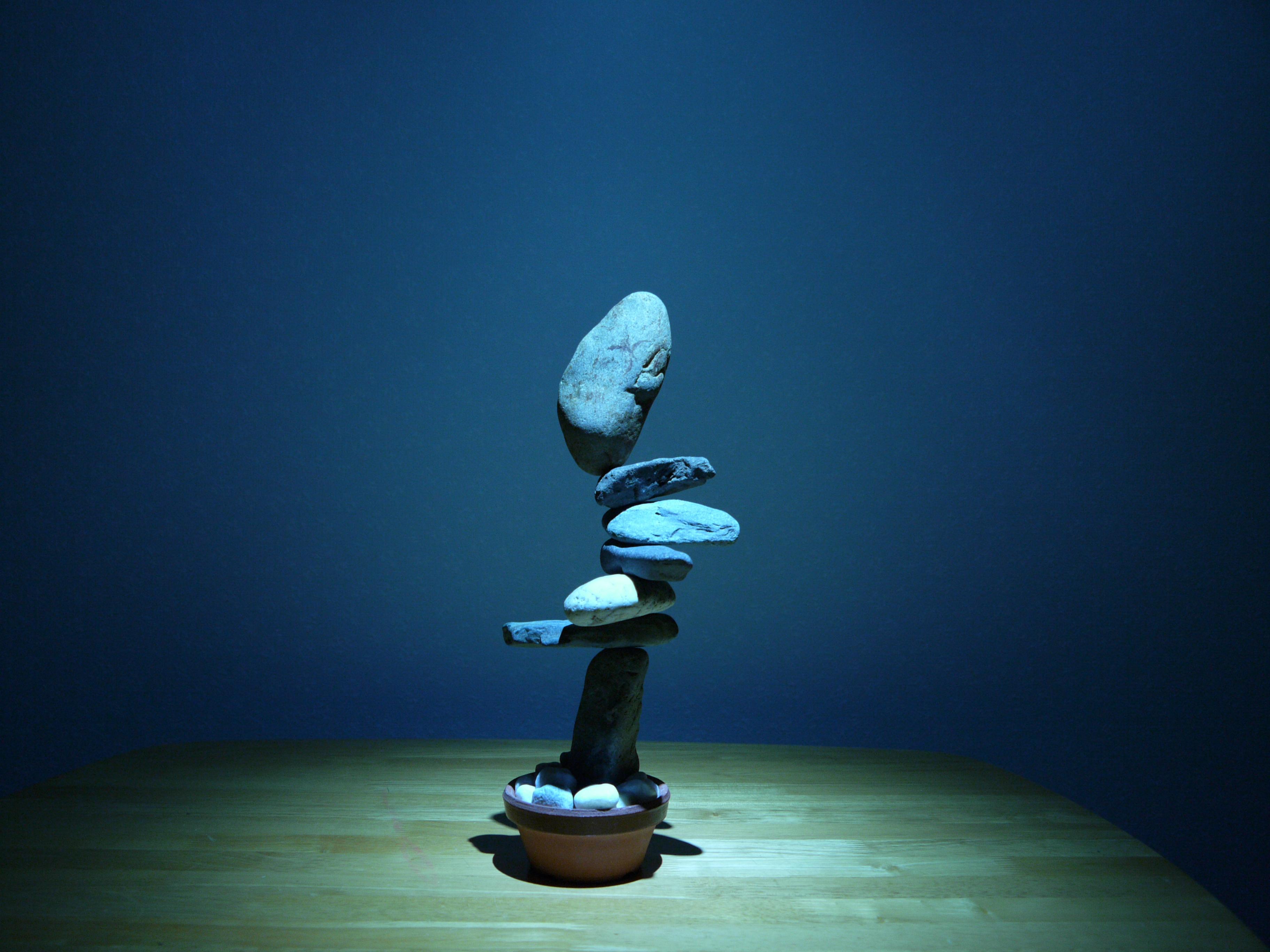http://chitoku.balancing.jp/wp-content/uploads/P1210524.jpg